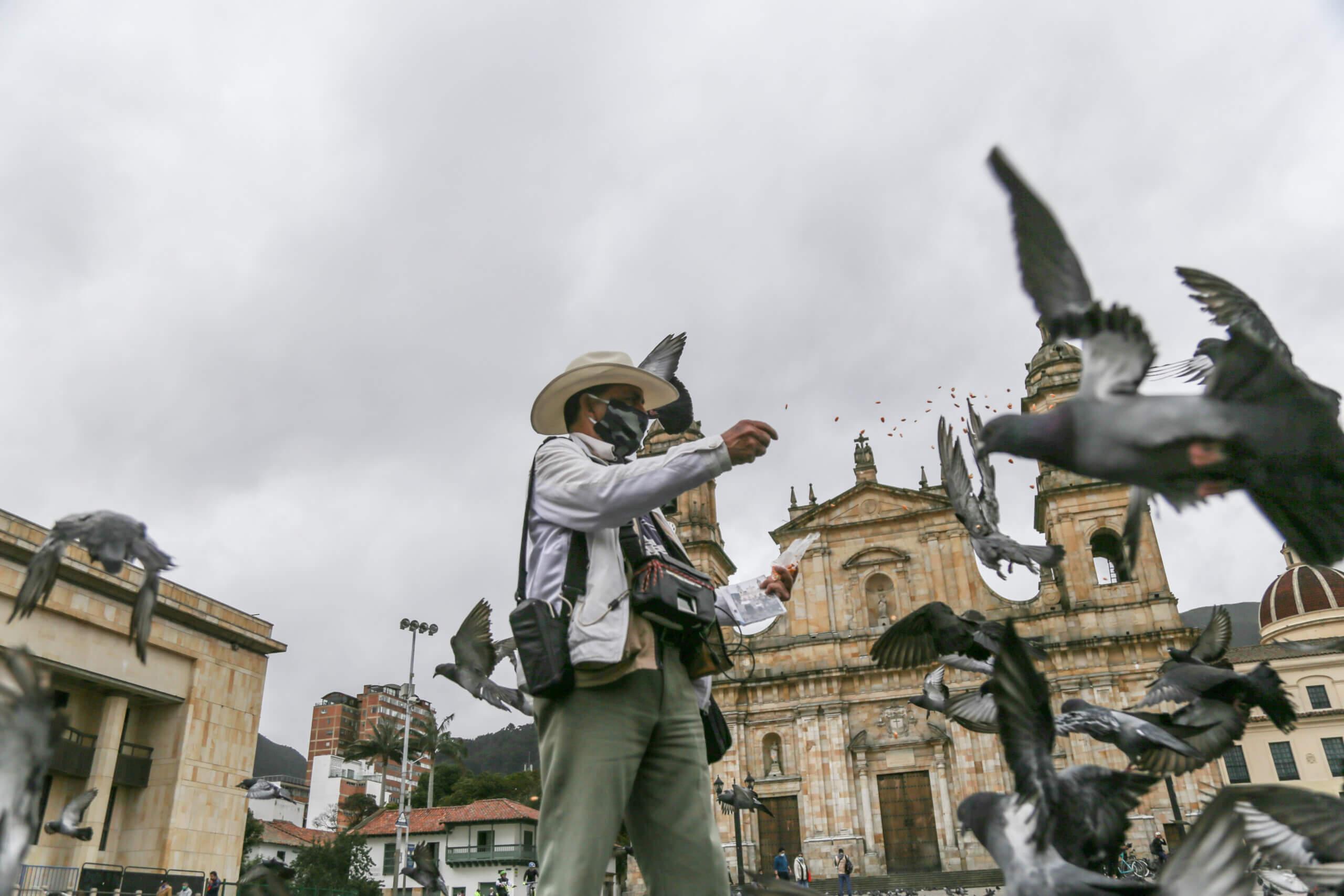 Kolombiya'nın başkenti Bogota'daki Bolivar Meydanı'nda bir fotoğrafçı güvercinleri besledi.